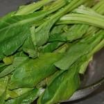 Recipe【小松菜の香港風にんにく炒め】