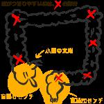 腸のマッサージ