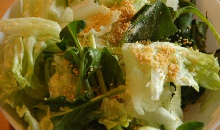生野菜サラダにゼラチンとレシチン