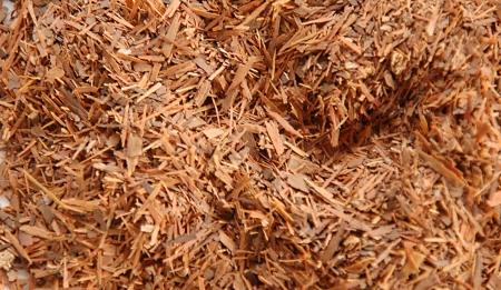 パウダルコの乾燥樹皮