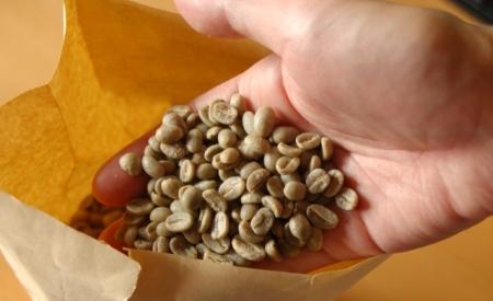 オーガニックのコーヒー生豆