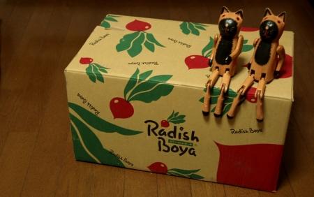 らでぃっしゅぼーやから届いた箱