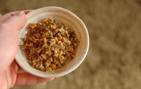 カモミールティーの茶葉