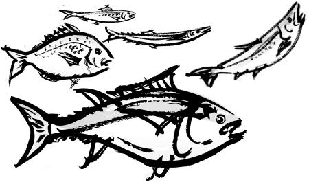 ヒスタミンを含む魚たち