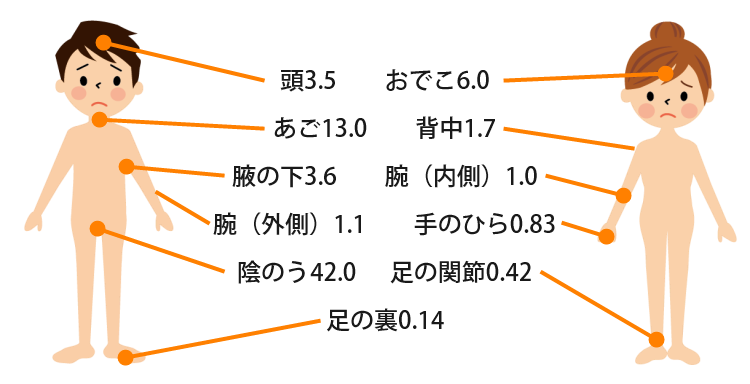 ステロイドの身体の部位ごとの吸収率